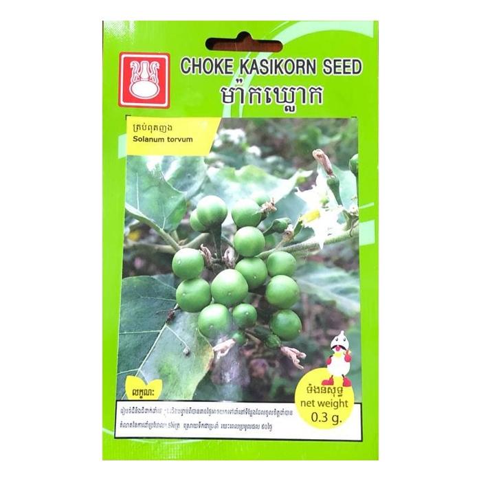 ត្រប់ពុតញង - Solanum Torvum